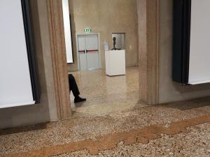 Gary-Greenwood_Ca-Pesaro-Museum